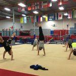adults gymnastics images (1)