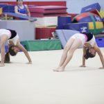 ladies gymnast image1.