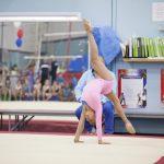 ladies gymnast image2