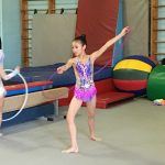 rhythmic gymnastics images (18)